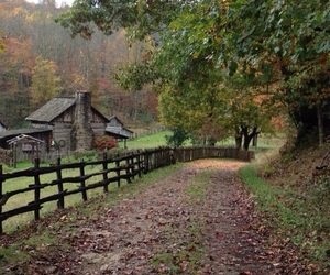 adventures, autumn, and dirt road image
