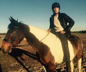 ian somerhalder and horse image