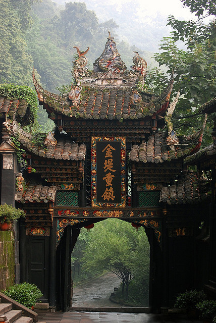 Chengdu, forest, and nature image