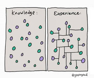 experience, knowledge, and life image