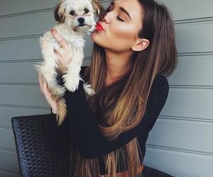 dog and kiss image