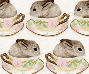 bunny, cup, and rabbit image