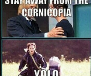 yolo, the hunger games, and funny image