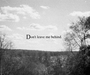 text, leave, and behind image
