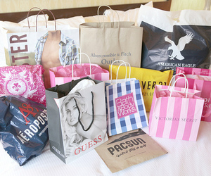shopping, hollister, and bag image