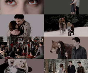 breaking dawn, twilight, and cullens image