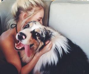 dog, love, and girl image