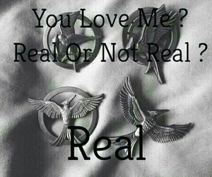 hunger games, book, and real image