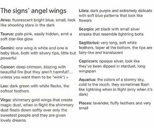 angels, zodiac signs, and astrology image