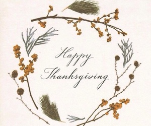 thanksgiving and november image