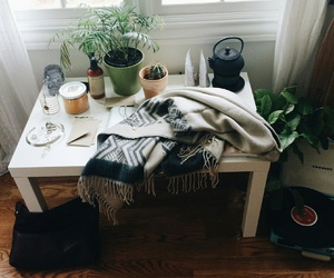 plants, room, and style image