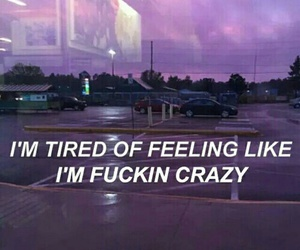 crazy, grunge, and quotes image
