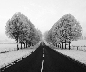 black and white, winter, and alle image