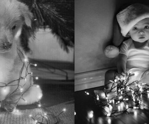 adorable, baby, and lights image