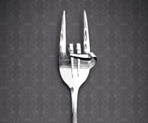 cool, funny, and fork image