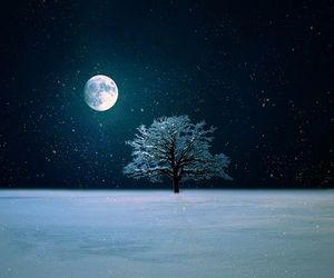 snow, moon, and tree image