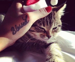 cat, christmas, and tattoo image