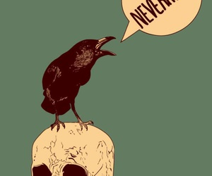 nevermore, raven, and the raven image