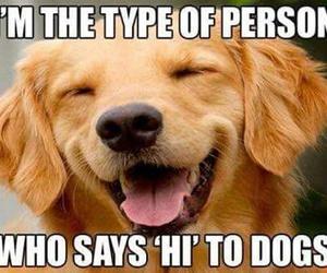 dog, doge, and hi image