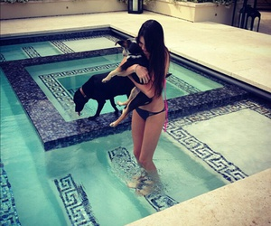 dog, kendall jenner, and pool image