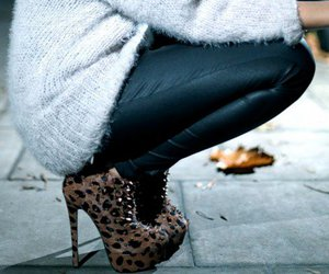 heels and leopard image