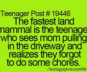 funny, teenager post, and teenager image