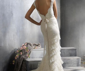 wedding dress and bride image