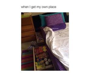 funny, food, and bed image