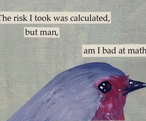 quotes, bird, and risk image