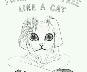 cat, free, and drawing image