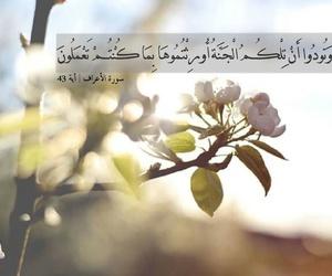 القرآن الكريم, جَنَة, and اسﻻم image