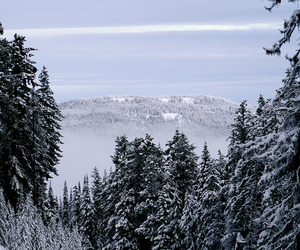 beautiful, december, and Dream image