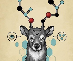 art, chemistry, and deer image