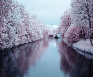nature, pink, and river image