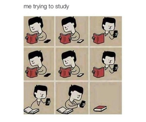 funny, book, and study image