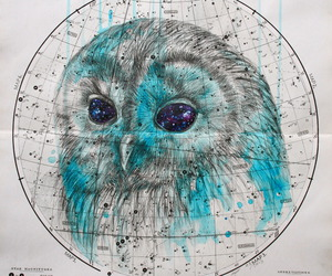 owl, blue, and art image