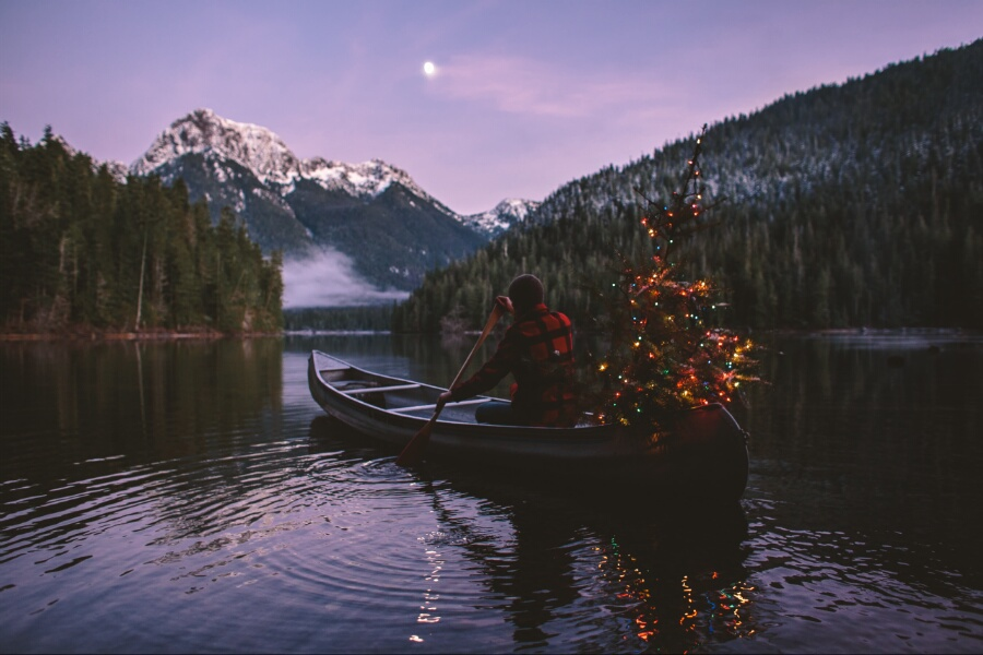 mountains, christmas, and nature image