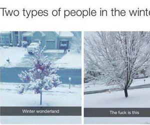 winter, funny, and snow image