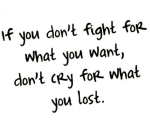 fight, quote, and cry image