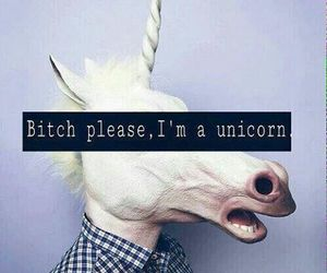 unicorn, bitch, and tumblr image