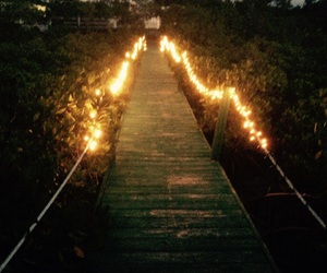 beautiful, life, and lights image