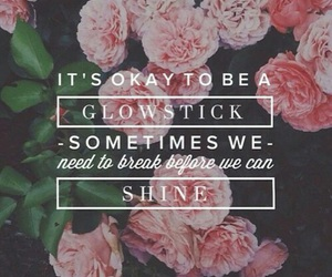 quote, flowers, and shine image
