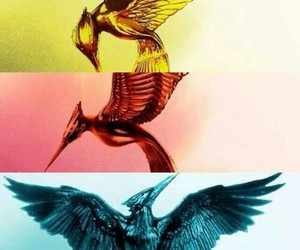 mockingjay, sinsajo, and catching fire image