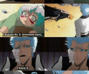 bleach and grimmjow jaggerjacks image