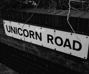 black and white, road, and unicorn image