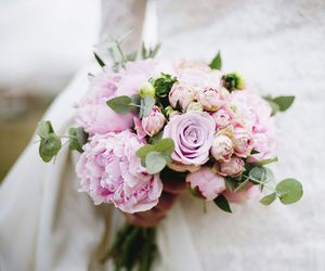 beautiful, flores, and roses image