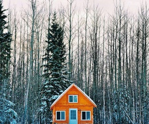 winter, forest, and house image