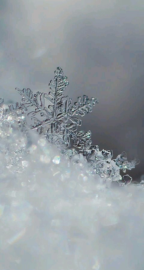 Winter Discovered By Spontk On We Heart It