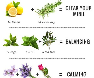 bath, herbs, and aromatherapy image