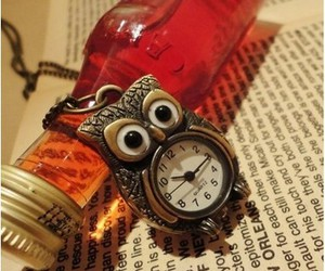 owl and watch image